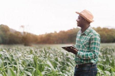 niger-govt-to-pump-100mln-into-digital-agriculture-transformation
