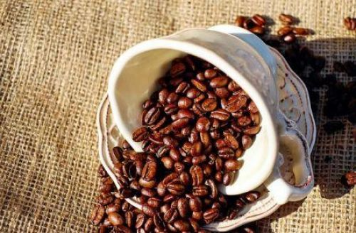 World Coffee Production will fall by 0.9% in 2019/20 (ICO)