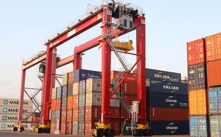 congo-terminal-takes-delivery-of-two-new-yard-gantries