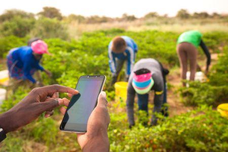 building-a-green-world-africa-green-ict-forum