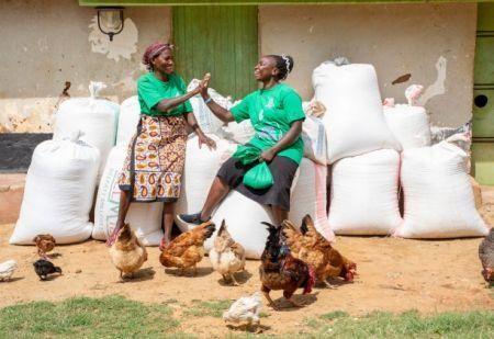 kenya-s-apollo-agriculture-raises-6mln-expansion-fund