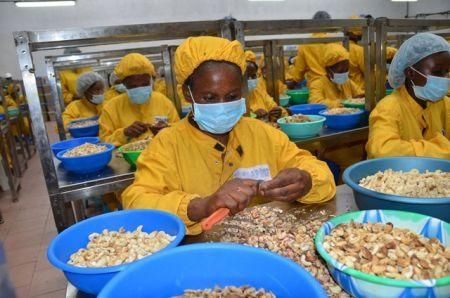 cote-d-ivoire-sets-small-and-medium-sized-enterprise-guarantee-fund