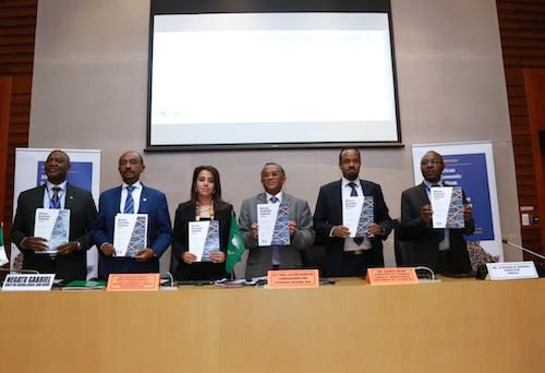 African Development Bank's African Economic Outlook well received at 2019 AU Summit