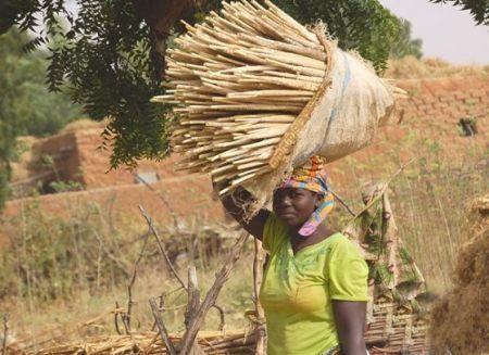 wfp-supports-niger-s-zero-hunger-scheme-with-1bln