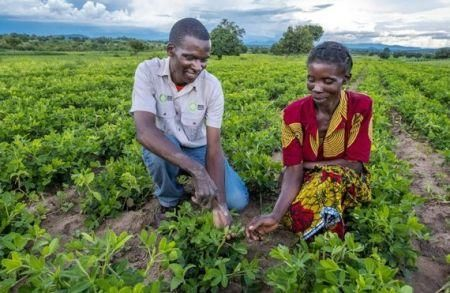 zambian-good-nature-agro-closes-2mln-financing-for-farmers