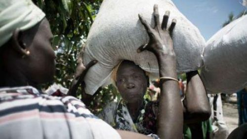 Fourteen African countries at high risk of rising levels of acute hunger (UN)