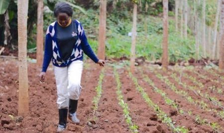 kenya-govt-sets-20mln-youth-centered-agribusiness-fund