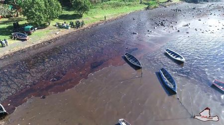 mauritius-african-development-bank-approves-emergency-relief-to-boost-clean-up-of-marine-oil-spill