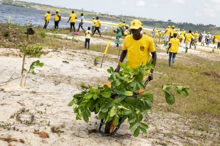 cote-d-ivoire-msc-pioneer-in-combating-erosion-in-ivory-coast