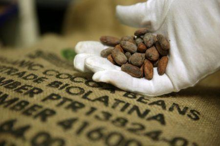 belgian-chocolate-maker-belvas-plans-1mln-investment-in-cote-d-ivoire
