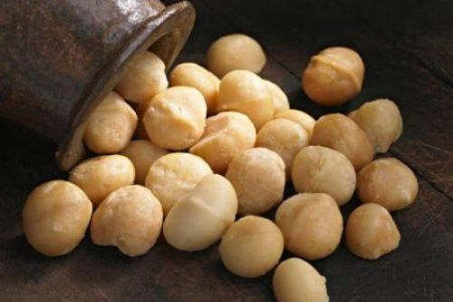 AgDevCo partners with Root Capital to invest $5 mln in Kenyan macadamia sector