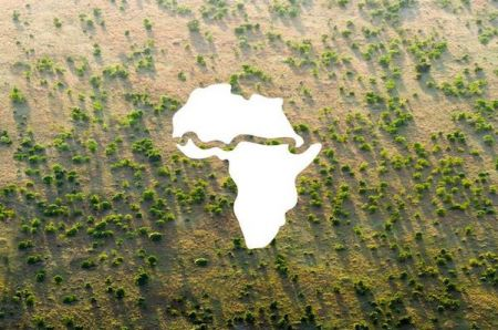 sahel-region-the-african-development-bank-pledges-to-mobilise-6-5-billion-in-support-of-the-great-green-wall-initiative