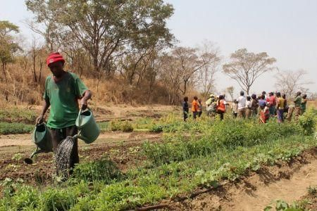 ofid-grants-20mln-to-promote-agricultural-sub-sectors-in-burkina-faso