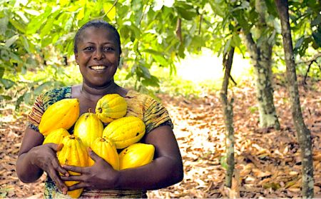 agriculture-in-africa-impact-of-covid-19