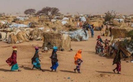 about-7-000-people-flee-to-mali-after-the-chinegodar-attack-in-niger