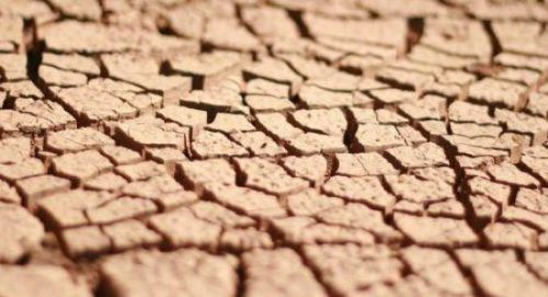 Namibia announces $40 mln help for drought-affected people