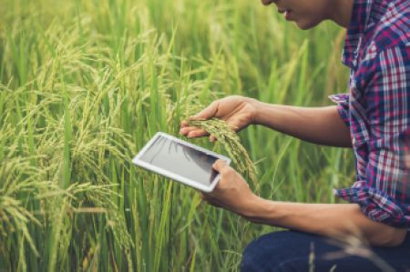 digital-technologies-a-game-changer-for-africa-s-agricultural-sector