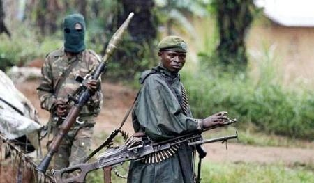 dr-congo-30-die-in-a-new-attack-adf-terrorists-blamed