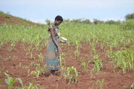malawi-secures-4-4-mln-norwegian-agricultural-financing